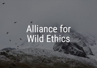 Alliance for Wild Ethics – integrating communities with the nature that surrounds them