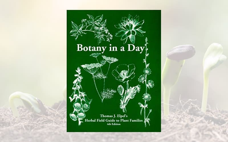 Botany in a Day: Herbal Field Guide to Plant Families