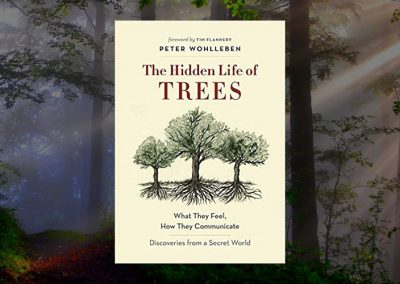 """The Hidden Life of Trees"" and other books by Peter Wohlleben"