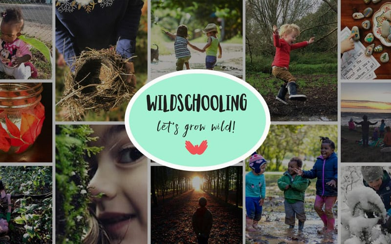 Wildschooling – a gathering place for nature-connected home educators